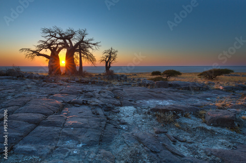 Sunrise at the Baobabs