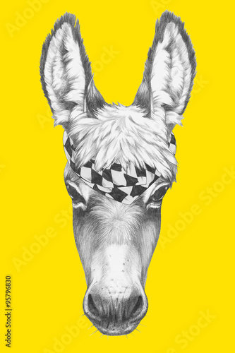 Photo Portrait of Donkey with scarf. Hand drawn illustration.