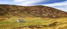 Cairngorms Panorama