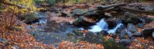 Autumn Creek Panorama