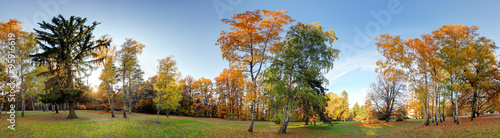 Aluminium Prints Autumn Forest autumn panorama in park