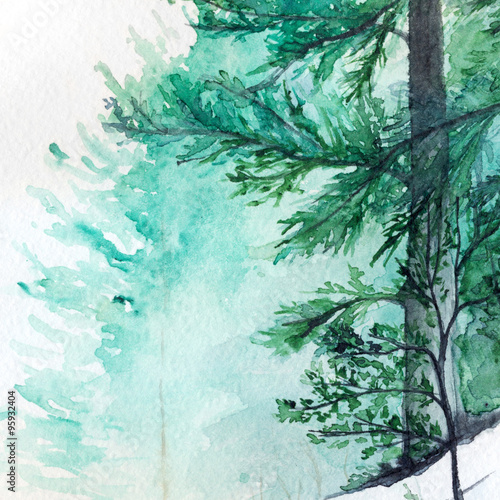 winter-wood-forest-pine-landscape