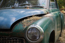 Old Car Rusting In Forest