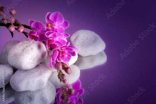 Orchidea z białymi kamieniami na lustrze