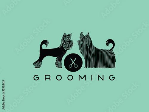 Fotografía  Pet grooming 6