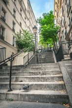 Montmartre Staircase In Paris