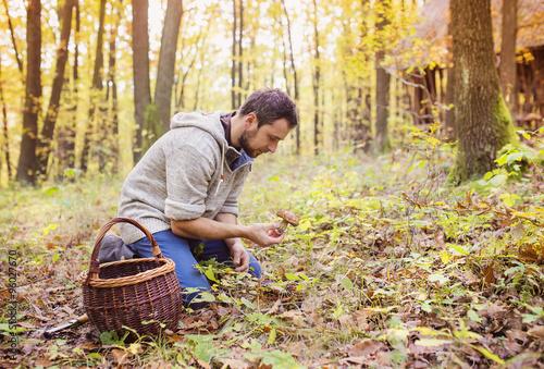 Obraz na plátně Man picking mushrooms