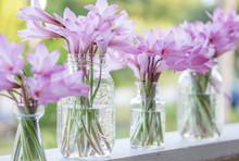 A Row Of Purple Flowers In Gla...