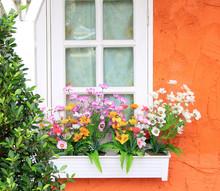 Flower Box In Window Of Orange Building