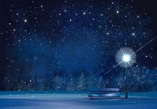 Vector Winter Wonderland Night Background.