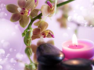 Obraz na płótnie Canvas composizione con orchidea