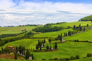 FototapetaBeautiful landscape of Tuscany with the twisting road and cypresses
