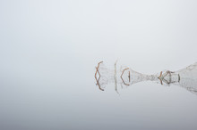 Twisted Fence In Mirror Calm L...