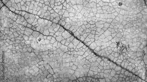 Photo sur Toile Les Textures Grunge cement wall
