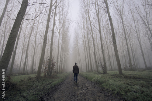 Fotografie, Obraz  Muž chůzi na špinavé silnici mezi mlha a stromy