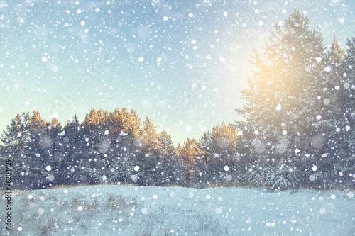 Printed kitchen splashbacks Light blue Winter landscape