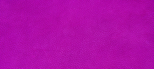 Leather purple texture