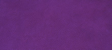 Leather Purple Texture