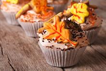 Delicious Cupcakes In Autumn S...