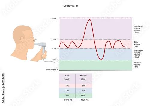 Fotografie, Obraz  spirometria: test per la valutazione della capacità polmonare