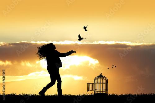 Fotografie, Obraz  girl and birds at sunset