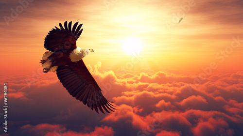Fotografering  Fish Eagle flying above clouds
