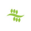 Green Leaf Icon Logo Template