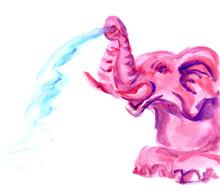 Hand Drawn Pink Elephant.