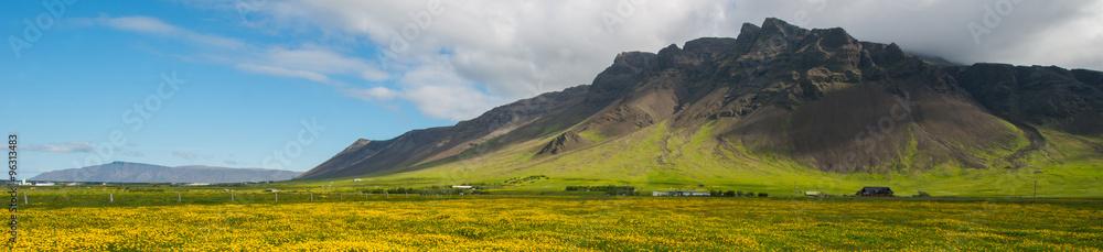 Fototapeta Reykjanes peninsula in summer - obraz na płótnie