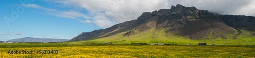 Fototapeta Reykjanes peninsula in summer obraz na płótnie