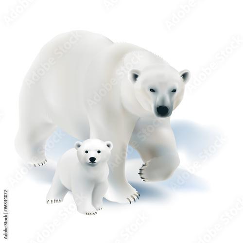 Fotografie, Obraz  Polar bear and cub