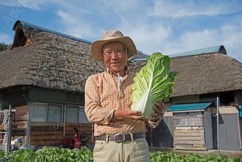 Fotografiet  田舎暮らしで野菜を収穫している笑顔のシニア