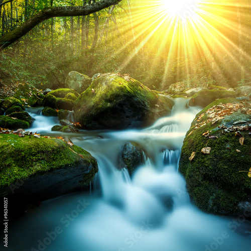 Smoky Mountain stream with mossy rocks