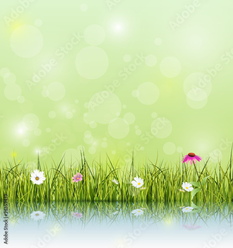 Soft Green Flower Background - Flowers Healthy