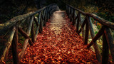 Fototapeta Perspektywa 3d - old wooden bridge covered with autumn leaves