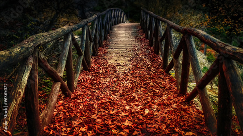 old wooden bridge covered with autumn leaves