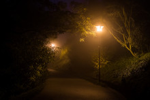 Empty Footpath With Lamppost In The Park In Night