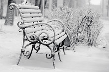 Bench In Winter Park Covered W...