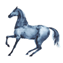 Watercolor black horse in motion. Beautiful hand drawing illustration on white.