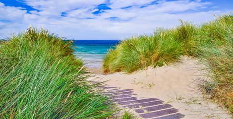 Fototapeta Morze Die Dünen von Philorth