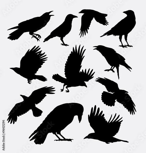 Slika na platnu Crow bird, poultry animal silhouette