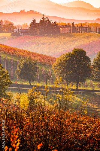 Stickers pour portes Orange eclat Castelvetro di Modena, vineyards in Autumn, italy