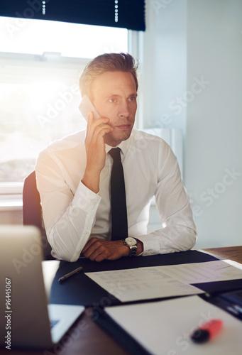 Garden Poster Business man having a conversation on the phone