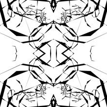 Abstract Black And White Artis...