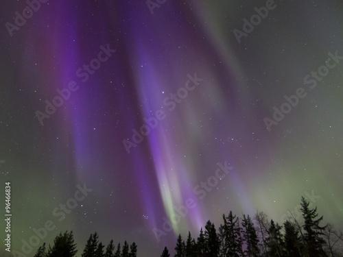 Photo Stands Northern lights Aurora Borealis (Northern lights) in Alberta, Canada