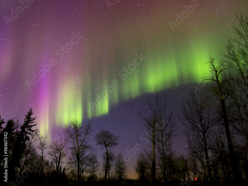 Photo  Aurora Borealis (Northern lights) in Alberta, Canada