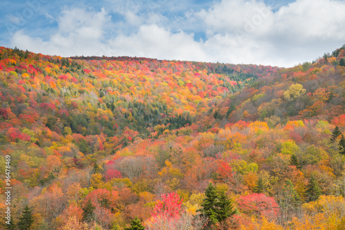 Fotografie, Obraz  Fall Foliage in the Mountains of West Virginia along scenic high