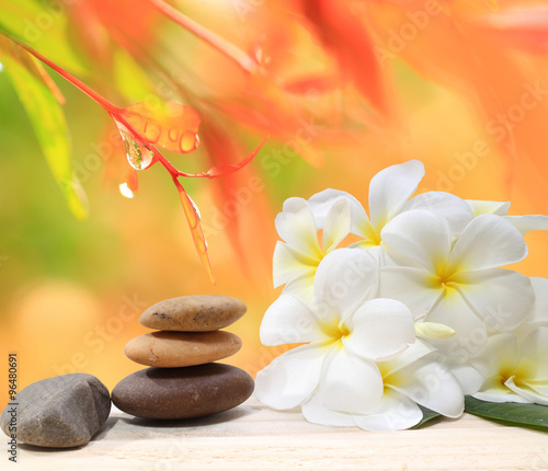 Zen spa concept background - Zen massage stones with frangipani plumeria flower and Water drops on the nature background Wall mural