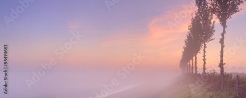 Fotografía Foggy sunrise in typical polder landscape in The Netherlands