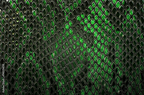 Photo Snake skin background